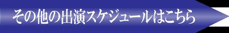 大江戸ハワイフェスティバルリンク2